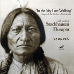 Cover for In The Sky I Am Walking (Songs Of The Native Americans)