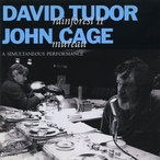 Cover for David Tudor/John Cage: Rainforest II/Mureau